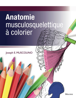French-Cover-Anatomie-Muscolino