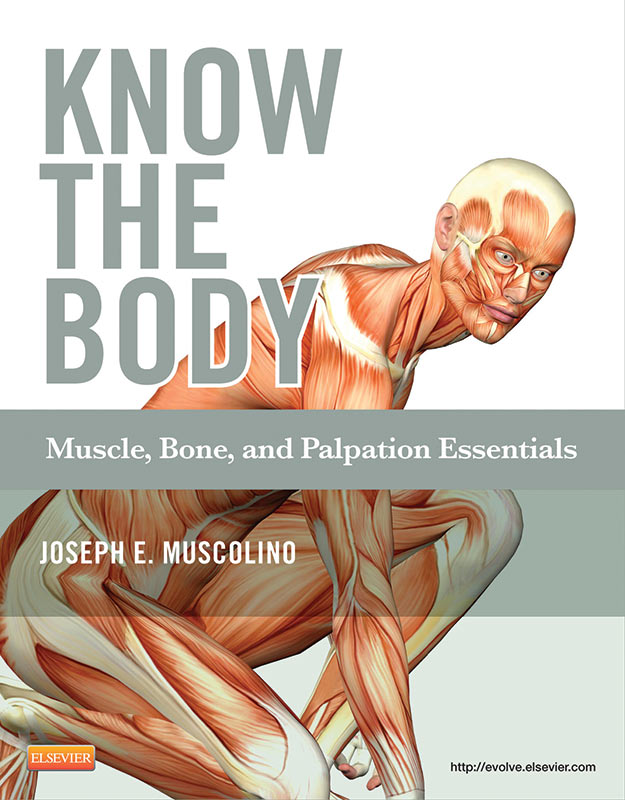 Books - Learn Muscles