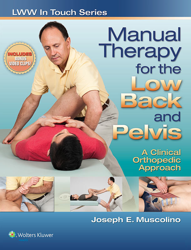 low-back-and-pelvis