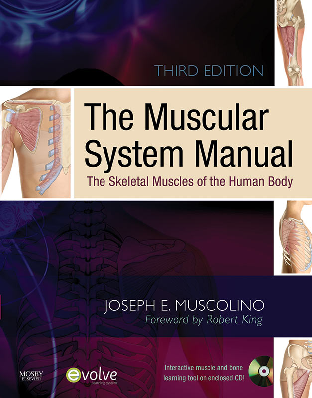 Home Study Courses Learn Muscles