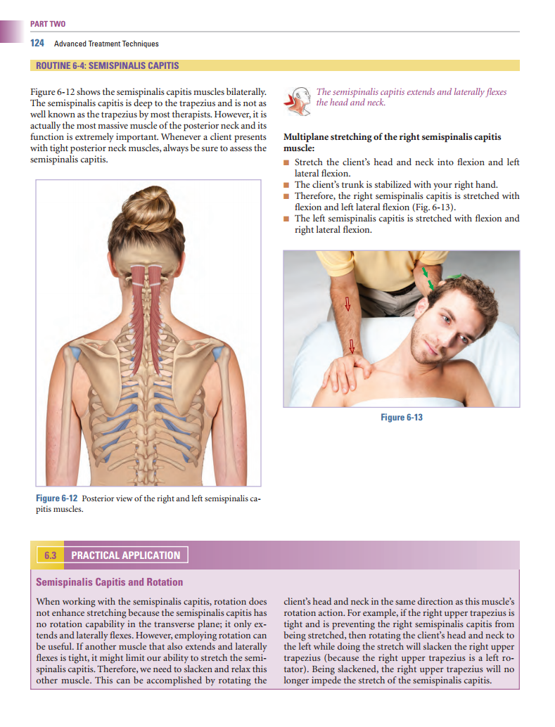 Head And Neck Muscles Manual Guide