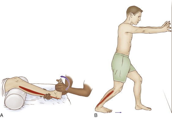 Self-care (and therapist assisted) stretch for the soleus. Permission: Joseph E. Muscolino. The Muscle and Bone Palpation Manual, 2ed (2016), Elsevier.