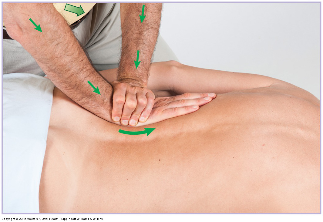 Deep pressure into the lumbar paraspinal musculature using a braced flat palm contact. Permission: Joseph E. Muscolino. Permission: Joseph E. Muscolino. Manual Therapy for the Low Back and Pelvis (2015).