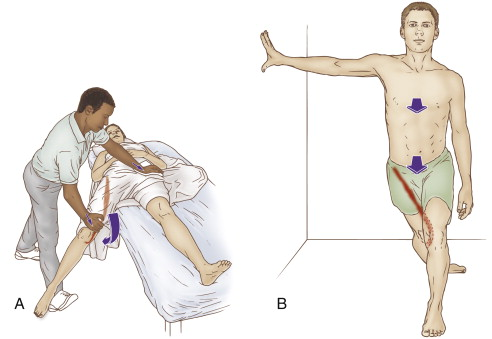 Self-care (and therapist assisted) stretch for the sartorius. Permission: Joseph E. Muscolino. The Muscle and Bone Palpation Manual (2016), (Elsevier).
