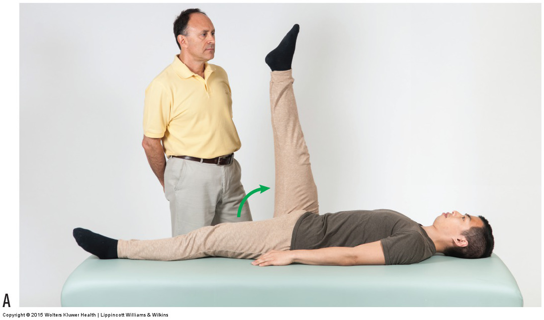 Active straight leg raise orthopedic test. Permission: Joseph E. Muscolino. Manual Therapy for the Low Back and Pelvis (2015).