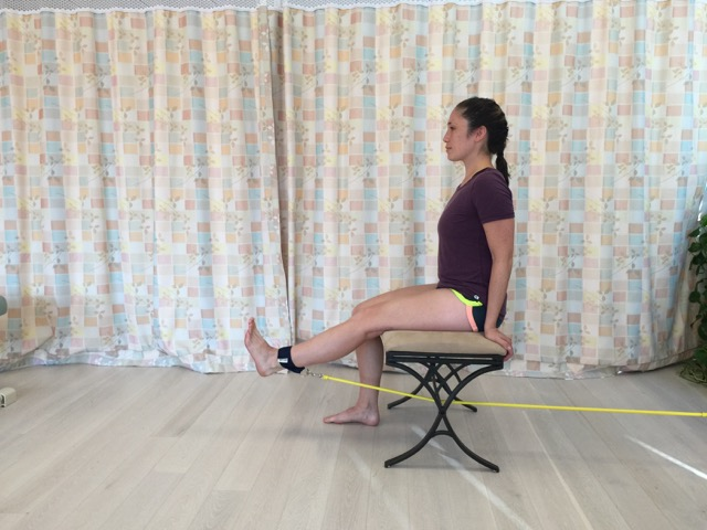 Resistance exercise using elastic tubing (Thera-ciser by Foot Levelers™). Permission: Joseph E. Muscolino.
