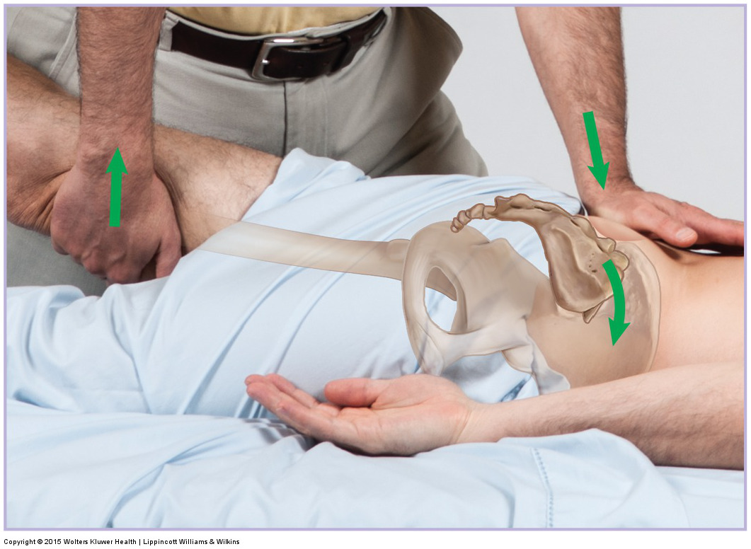 Joint mobilization of the sacrum into nutation (anterior tilt). Permission: Joseph E. Muscolino. Manual Therapy for the Low Back and Pelvis (2015).