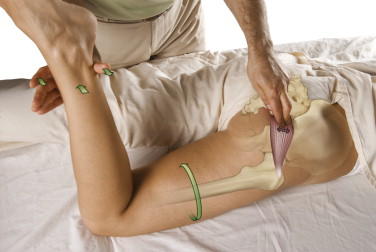 Manual Therapy Certification For Massage Therapists