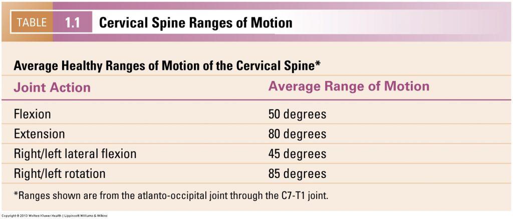 Cervical spine ranges of motion.