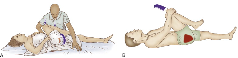 Quadratus Femoris Stretch