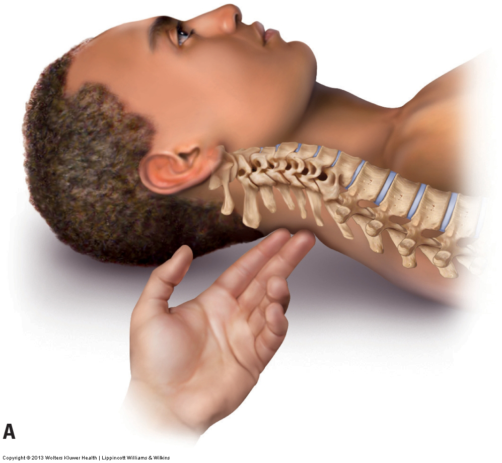 Palpation Assessment Of The Neck During Physical Examination