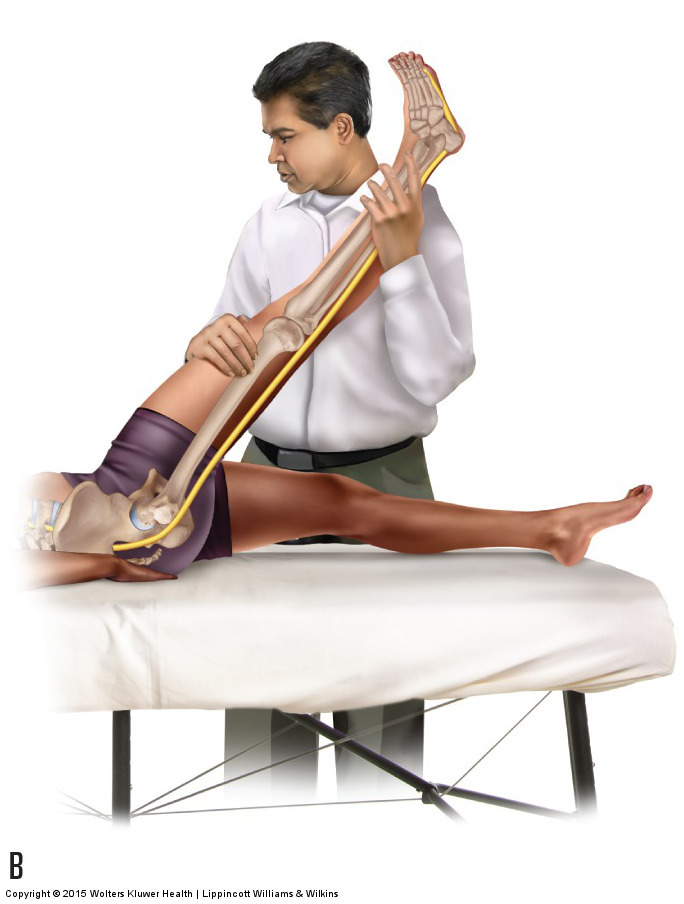 Passive Straight Leg Raise Orthopedic Assessment Test